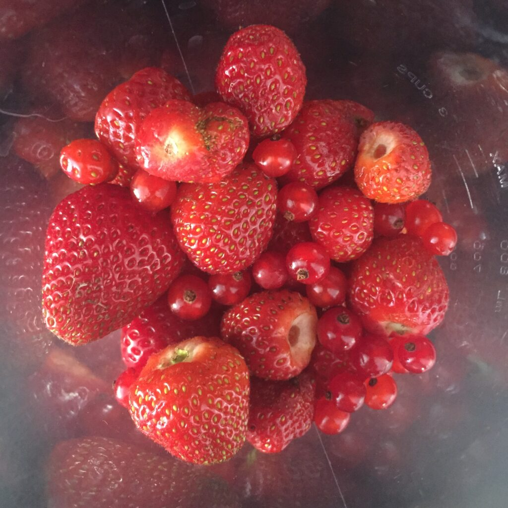 jahody a rybíz rozmixujeme na pyré